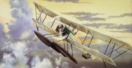 Picture of Bluebill Aircraft